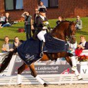 dressage horses voskens
