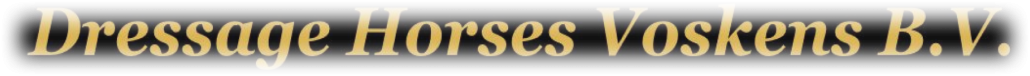 if you're looking for high quality dressage horses and personal service, you've come to the right place and contact dressage horses voskens